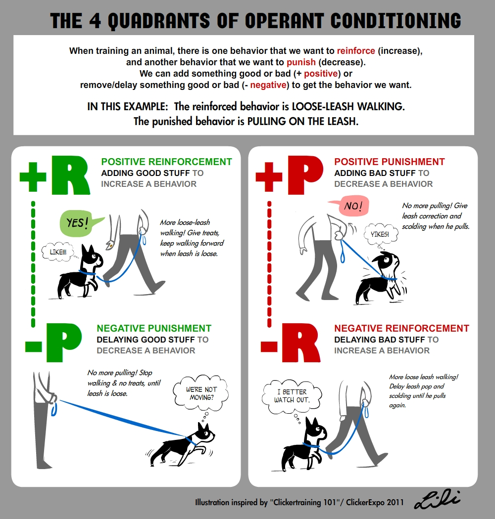 operant conditioning XR3sxpQA